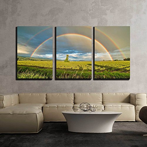 3 Piece Canvas Wall Art - Tree in a Blueberry Field under a Double