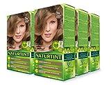 Naturtint Permanent Hair Color - 7N Hazelnut Blonde, 5.28 fl oz (6-pack)