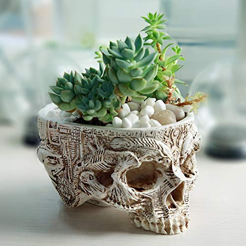 Bowl Planter - Drop Shipping Creative Flowerpot Hand Carved Skull Flower Pot Bowl Home Garden Halloween Decoration