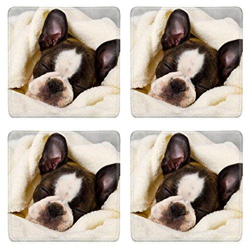 (Luxlady Square Coaster Boston terrier sleeping in white towels studio shoot IMAGE 20130004 Customized Art Home Kitchen)