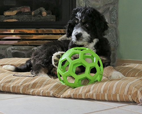 Hol Ee Roller Rubber Chew Toy (JW Pet Hol-ee Roller Rubber Dog Toy, Size 6.5 Inches, Large size [Misc.])
