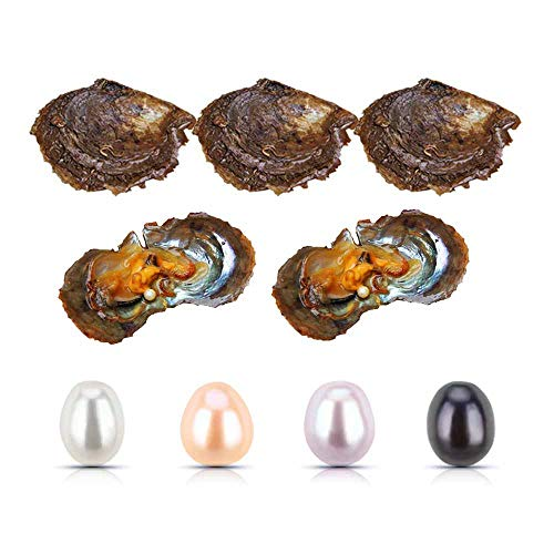 50 Pieces 6-7MM Freshwater Cultured Pearl in Oyster, Mixed Color White/Pink/Lavender/Black Oval Pearl Oyster for Pearl Party Jewelry Making ()