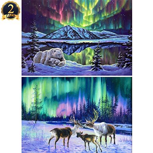 2 Pack Aurora 5D Diamond Painting Polar Bear & Deer Full Drill by Number Kits for Adults Kids, Ginfonr Craft Rhinestone Polar Lights Paint with Diamonds Set Arts Decorations (12'' x 16'')