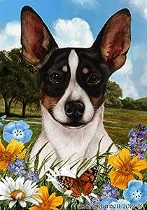 Rata Terrier Tri–mejor de raza verano flores grandes banderas