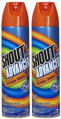 Shout Stain Lifting Foam 18