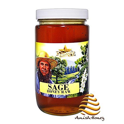 Amish Extremely Raw SAGE BLOSSOM Honey 1Lb
