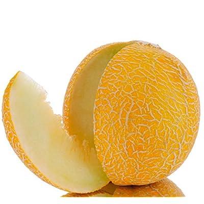 Melon seeds Honey. Extremely sweet. Ukraine heirloom Vegetable seeds : Garden & Outdoor