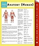 Anatomy (Human) (Speedy Study Guides)