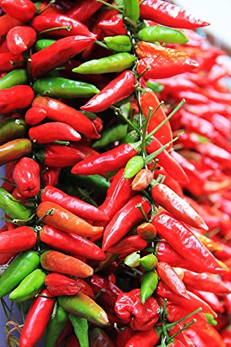 Home Comforts Acrylic Face Mounted Prints Chili Red Spice Food Chili Peppers Sharp Pods Print 24 x 36. Worry Free Wall Installation - Shadow Mount is Included. (Chili California Pod)