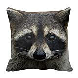 Generic Cute Young Raccoon Face Mask and Stare Close Up Pillow Cover Square