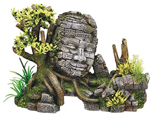 Nobby Decoración acuario, diseño de columnas antiguas con plantas, 25 x 12.5 x 18 cm: Amazon.es: Productos para mascotas