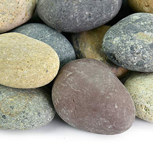 Mexican Beach Pebbles | 20 Pounds of Smooth Unpolished Stones | Hand-Picked, Premium Pebbles for Garden and Landscape Design | Mixed, 1 Inch - 2 Inch ()