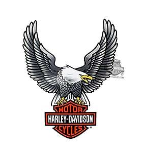 amazon com harley davidson upwing eagle large decal automotive rh amazon com harley davidson eagle logo american flag harley davidson eagle logo history