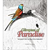 img - for Glimpses of Paradise: The Quest for the Beautiful Parrakeet book / textbook / text book