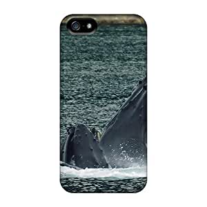 Premium Durable Sharks Fashion Tpu Iphone 5/5s Protective Case Cover