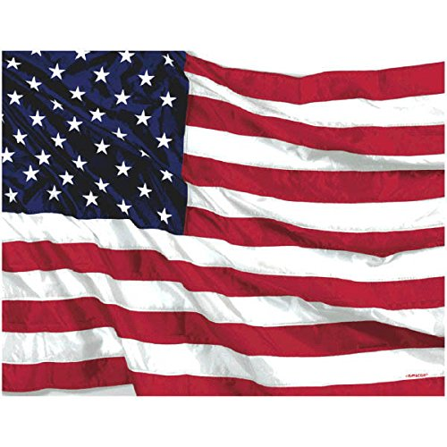 Patriotic Flying Colors - Flying Colors Disposable Table Cover (54 In. X 102 In.)