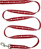 Wisconsin Badgers Leash & Collar Set Large