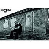 "Trends International  Eminem LP 2 Wall Poster 22.375"" x 34"""