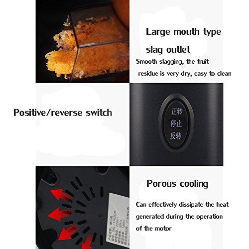 DULPLAY Quiet Slow Speed Masticating juicer,Healthy Fruit and Vegetable 180-watt,Bpa Free Metallic Juicer Machine -red 45x15x17cm(18x6x7inch) by DULPLAY (Image #7)
