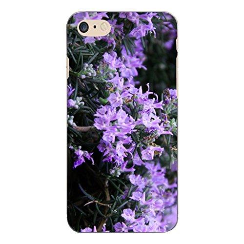 "Disagu Design Case Schutzhülle für Apple iPhone 7 Hülle Cover - Motiv ""Rosmarinblüten"""
