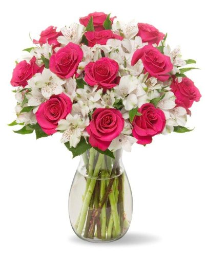 Benchmark Bouquets Signature Roses and Alstroemeria, With Vase (Flower Fruit Delivery)