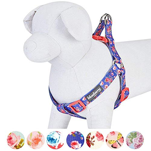 Blueberry Pet Step-in Spring Scent Inspired Rose Print Irish Blue Dog Harness, Chest Girth 16.5'' - 21.5'', Small, Adjustable Harnesses for Dogs by Blueberry Pet