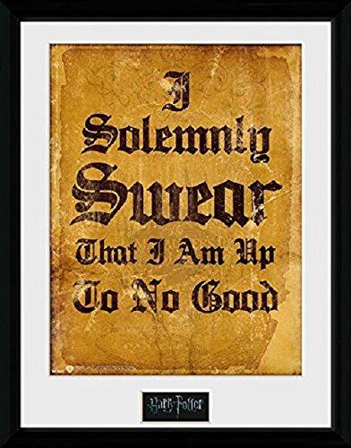Harry Potter Framed Photograph, 16 x 12 Inches GB eye Ltd PFC1381