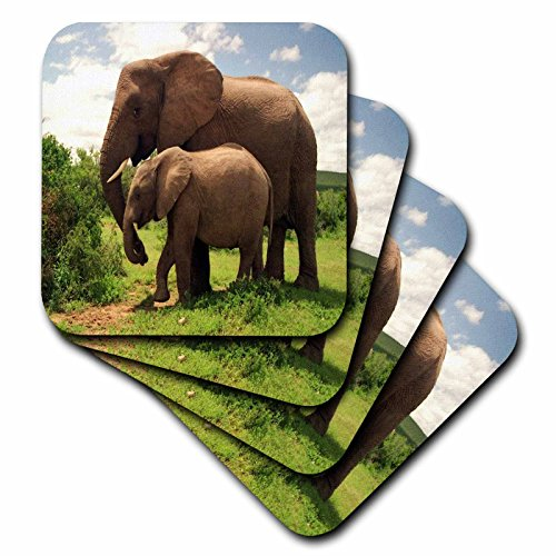 3dRose cst_44876_3 Mama N Baby Elephants in Wild Ceramic Tile Coasters, Set of (Baby Tile Coaster)