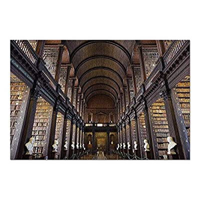 Dublin, Ireland - Beautiful & Expansive Library with Busts 9019109 (Premium 1000 Piece Jigsaw Puzzle for Adults, 20x30, Made in USA!): Toys & Games