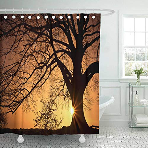 Emvency Fabric Shower Curtain with Hooks Orange Landscape Silhouette of Willow Tree with The Sun Behind Sunset Sunrise Horizon 60