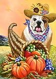 English Bulldog Autumn%2DGF