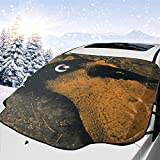 DonaldKAlford Ministry Animositisomina Windshield Car Sunshield,Easy to Use,Suitable for Most Cars