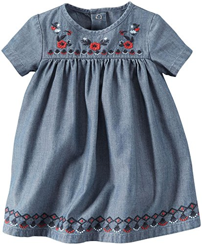 Carters Chambray Embroidery Dress Baby