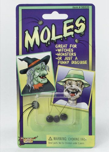 Bristol Novelty Wicked Witch Stick on Hairy Moles