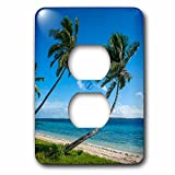 3dRose Danita Delimont - Tonga - Palm fringed white sand beach on an islet of Vavau, Tonga - Light Switch Covers - 2 plug outlet cover (lsp_250351_6)