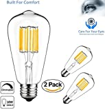 Best Globe Electric Dimmer Switches - Vintage Edison LED Bulb, Dimmable ST64 10W,100W Equivalent Review