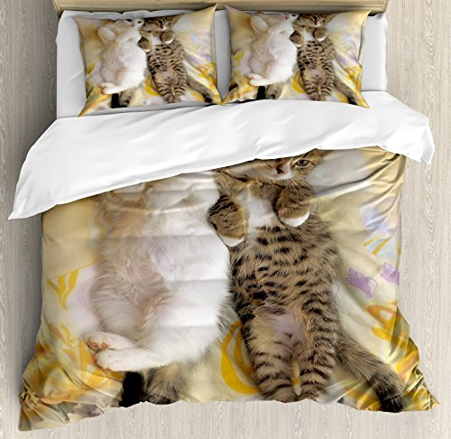 Ambesonne Funny Duvet Cover Set Queen Size, Kitten Siblings Lying Beside Sleepy Heads Cat Pet Animal Lovers Best Friends Image, Decorative 3 Piece Bedding Set with 2 Pillow Shams, Multicolor ()