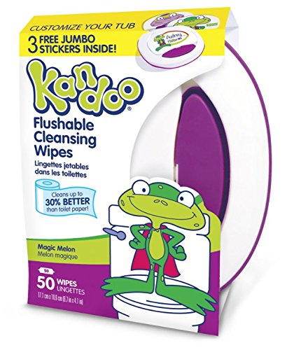 Kandoo Flushable Magic Melon Wipes 50 Count (Pack of 6)