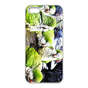 The Parrots Hight Quality Plastic Case for Iphone 5s