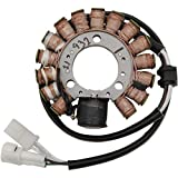 Ricks Motorsport Electric 21-643 Stator