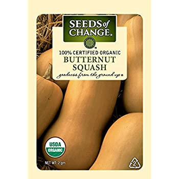 Seeds of Change 01069 Certified Organic Squash, Butternut Winter