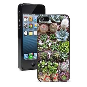 Apple iPhone 4 4S 4G Black 4B691 Hard Back Case Cover Color Different Cactus Plants Succulents