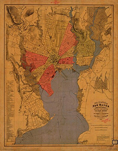 1877 City Plan | Historical City And Vicinity Of New Haven | CT Vintage Map Fine Art Reproduction Print (New Haven 100 Wall)