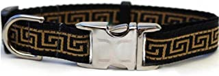 product image for Diva-Dog 'Caesar' Custom Engraved Dog Collar