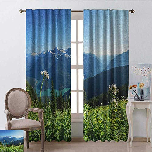 youpinnong Nature, Curtains Sliding Glass Doors, Diablo Lake Washington Mountains Dandelions Thistle Flowers Wilderness Image, Curtains for Party Decoration, W108 x L108 Inch, Green Sky - Diablo Door
