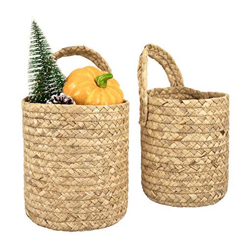 Seagrass Woven Storage Baskets Set of 2, Wall Hanging Baskets Organizer, Garden Plant Baskets (Wicker Wall Baskets)