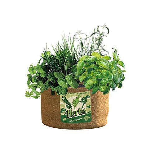 Herb Planter Bag - PANACEA PRODUCTS 5 gallon Grow Bag Herbs