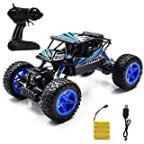 Jeestam RC Car, 2.4GHz Radio Remote Control Car 1:18 Scale 4WD High Speed Off Road RC Trucks Rechargeable Batteries Racing Monster RC Toy Car, for Kids and Adults (Blue)