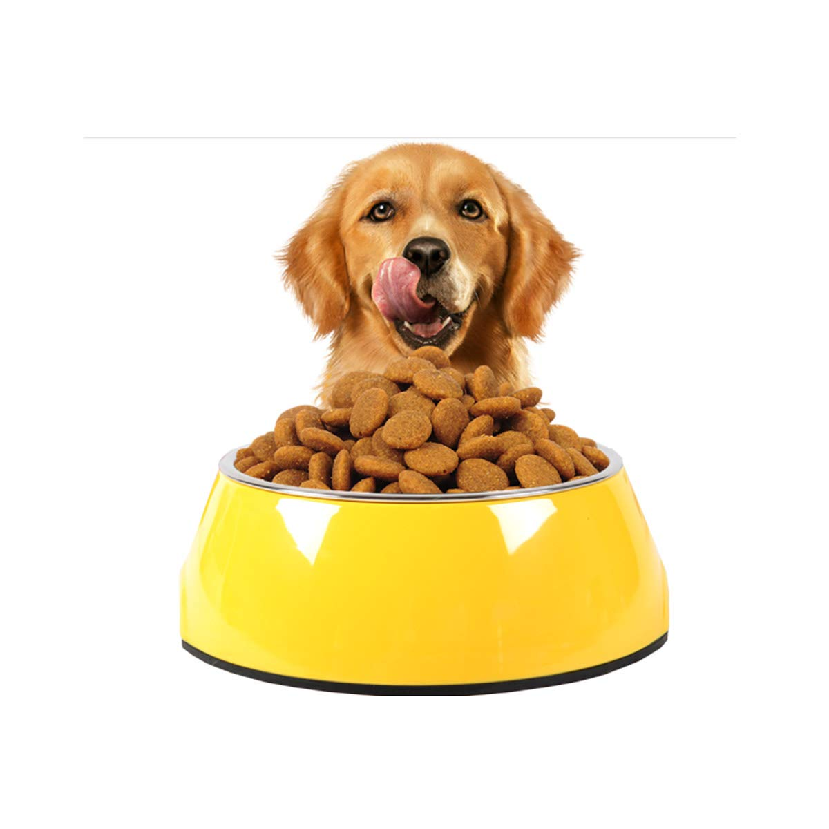 Yellow M Yellow M XIAN Cat Bowl, Cat Food Bowl, Dog Food Bowl, Pet Supplies, Ceramic Bowl, Cat Feeder, Dog Food Bowl, Best Gift Easy to Clean Bacteria & Rust Resistant (color   Yellow, Size   M)