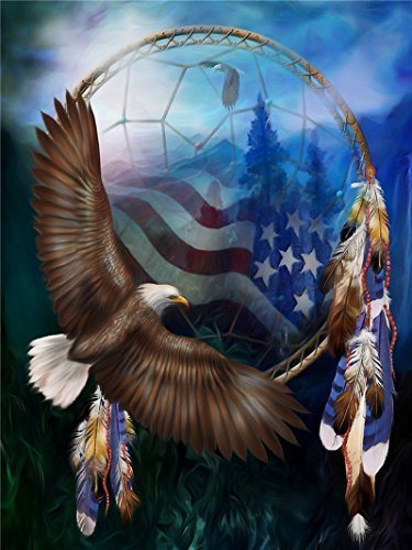 E-MPIRE 5D DIY Diamond Painting by Number Kits Diamond Painting Set American Flag Eagle Diamond Embroidery Painting Supplies 15.7X11.8ins(40X30cm) ()